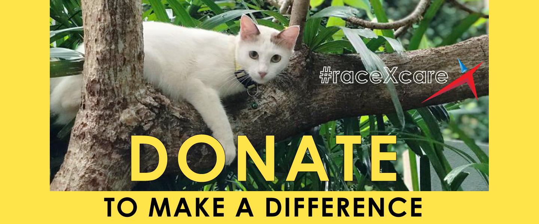 Furry Friends Farm Malaysia - Donation